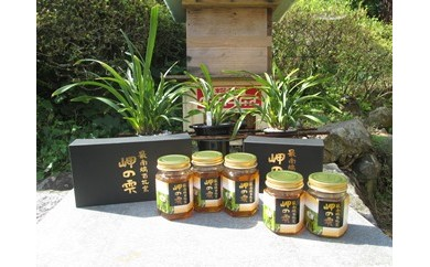 【ふるさと納税限定】日本みつばちの蜂蜜【100cc×2本】