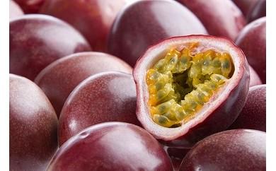 南国の恵みパッションフルーツ<ご家庭用>1.5kg【先行予約】