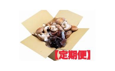 生椎茸&生キクラゲ 【 定期便 3ヶ月 】
