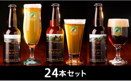 0116 【国内最高賞 受賞】胎内高原ビール 24本セット