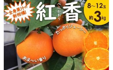 全身果汁の新柑橘 紅香(べにかおり)【長崎特産ブランドみかん】