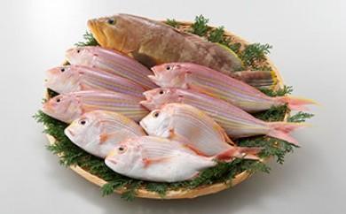 鮮魚詰合せ