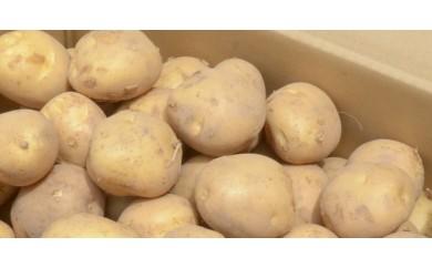 <限定>馬鈴薯ニシユタカ_10㎏