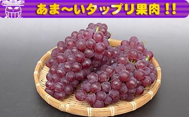 <香川産>デラウエアー[秀品]どっさり2kgの詰め合わせ