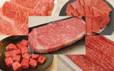 [全5回 毎月頒布会/配送日時指定可]伊予牛絹の味(A4、A5クラス)プレミアム堪能コース(冷蔵)