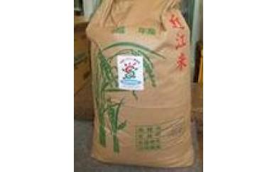 近江米こしひかり 30kg(玄米)
