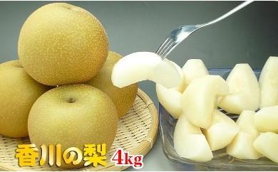 〈香川産〉あふれる果汁タップリのあま~い【梨4kg】詰め合わせ