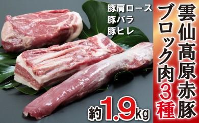長崎県産 雲仙高原赤豚 ブロック肉3種 約1900g