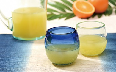 琉球ガラス タルカップグラス 2個