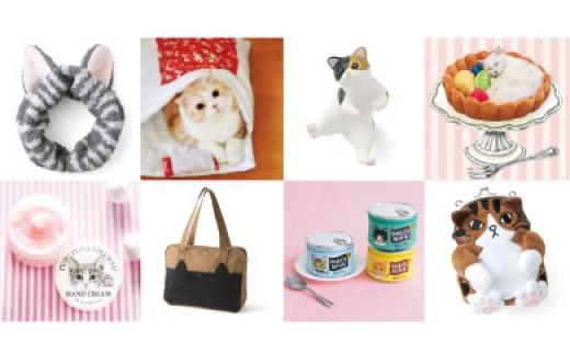 502:猫部の商品企画体験にご招待