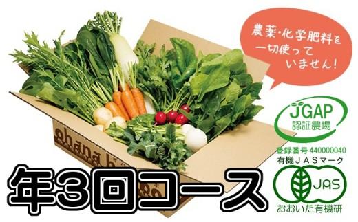 【定】有機野菜11品目をお届け!ohanaの定期便≪年3回コース≫