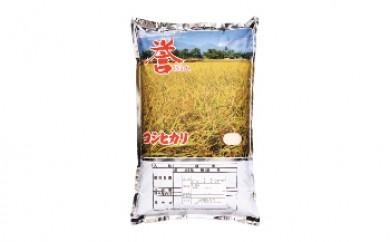 真岡産コシヒカリ 10kg白米