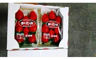 和歌山県産 まりひめ 1箱(2パック入)