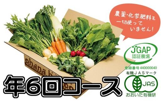 【定】有機野菜11品目をお届け!ohanaの定期便≪年6回コース≫