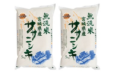 RM731-C【29年度産】天日干しササニシキ無洗米10kg(5kg×2袋)【22000pt】