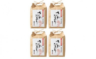 特別栽培米さがびより 8kg