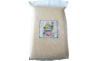 行田のお米 忍城献上米10kg