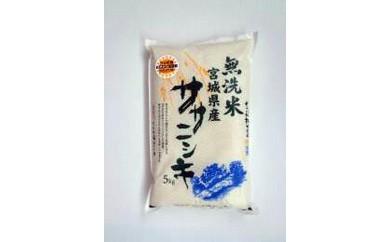 RM737-C【29年度産】天日干しササニシキ無洗米5kg【11000pt】