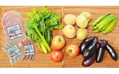D7050-C「ごちそう定期便」(加工品・野菜コースお試しセット)【14000pt】