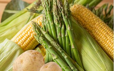 いわみざわの新鮮農産物セット(5or6月~11月)
