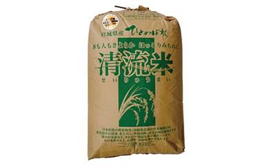 RM726-C【29年度産】天日干しひとめぼれ玄米30kg小分けなし【55000pt】