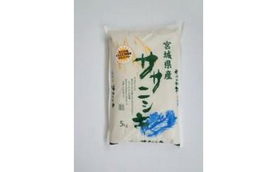 RM738-C【29年度産】天日干しササニシキ白米 5kg【11000pt】