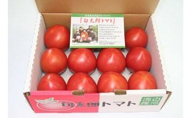 白河高原野菜 旬太郎トマト1kg×1箱