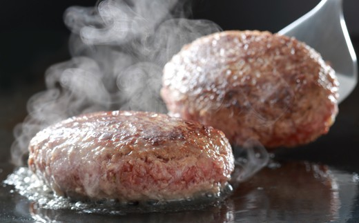 TB01【大平樂特選】老舗肉屋の豊後牛100%ハンバーグ(12個)
