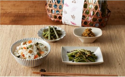 A6 美森山菜セット (わらび一本漬、山菜混ぜご飯の素、ぜんまい煮)