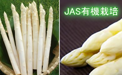 佐藤京一農園 有機JAS ホワイトアスパラ(800g)