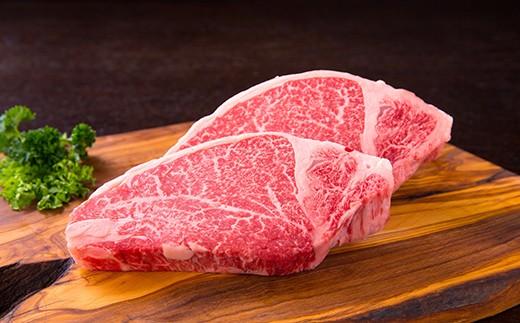 809 最高級!!鹿児島県産黒毛和牛A5ランクヒレステーキ180g×2枚