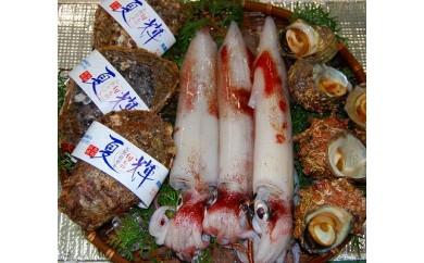【074】鳥取県産 夏の旬な鮮魚セット