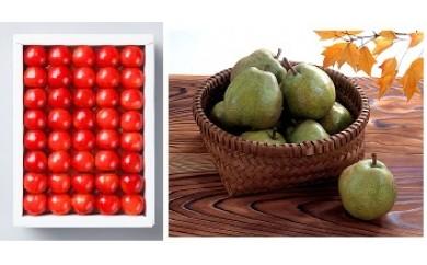 A033【定期便】日本一果物セット (さくらんぼ&ラフランス)