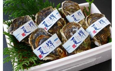 【072】鳥取賀露港 天然岩がき「夏輝」セット