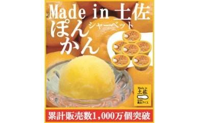 ぽんかんシャーベット6個/高知アイス/ポンカン/おいしんだもの/Made in 土佐