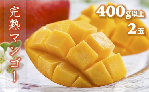 B617 完熟マンゴー(400g以上x2玉)