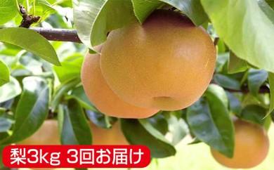 [№5712-0177]秋葉果樹園 特選梨(幸水・彩玉・あきづき)定期便3kg 3回お届け