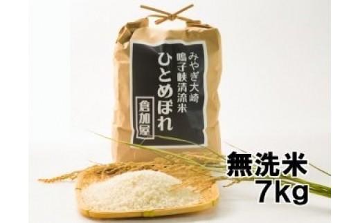 (03714)【無洗米7kg】お米のソムリエが選ぶ 鳴子峡清流米 ひとめぼれ【2017年産新米】