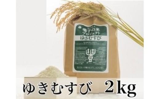 (03713)【2kg】限定100セット 鳴子の米プロジェクト ゆきむすび くい掛け生産【2017年産】