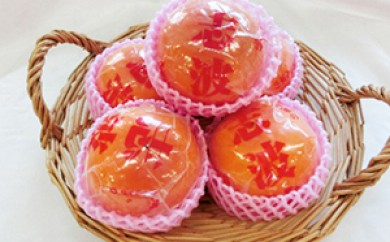 [№5656-0325]冷蔵柿(11~12玉)<ファームステーションバサロ>