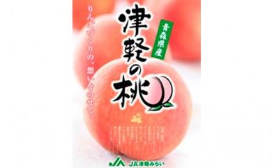 [№5731-0160]『津軽の桃・あかつき(白桃)』約3kg秀品