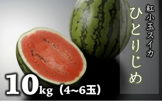 B618 紅小玉すいか(ひとりじめ)約10㎏(4~6玉)