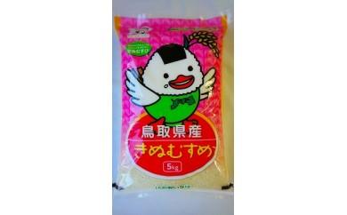 【096】鳥取県産きぬむすめ(5kg)