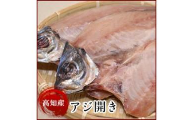高知県産 アジ開き(10尾)鯵 真あじの干物 岡岩商店