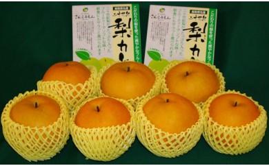 【036】新興梨・二十世紀梨カレーセット