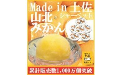 高知アイス 完熟山北みかんシャーベット6個/ミカン/Made in 土佐/完熟みかん