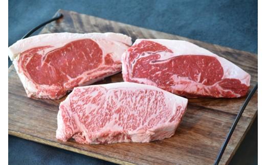 201NC.3種のステーキ食べ比べセット