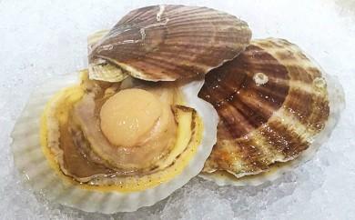 [№5742-0448]オホーツク朝採れ貝付きほたて4kg(25枚~40枚)