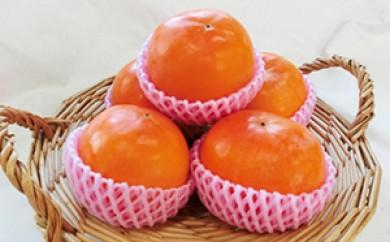 [№5656-0324]富有柿(11~12玉)<ファームステーションバサロ>