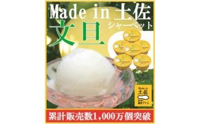 文旦シャーベット6個/高知アイス/文旦/ぶんたん/Made in 土佐